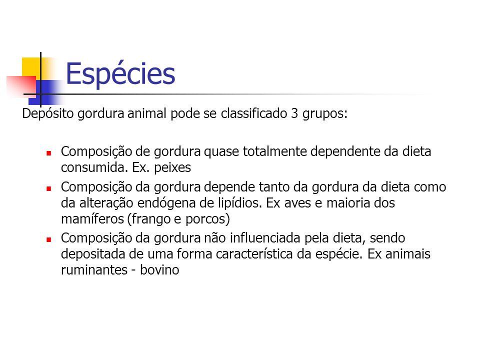 Espécies Depósito gordura animal pode se classificado 3 grupos: