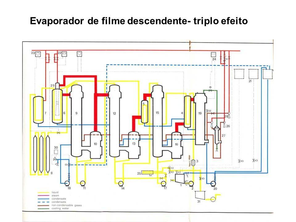 Evaporador de filme descendente- triplo efeito