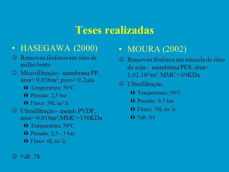 Teses realizadas HASEGAWA (2000) MOURA (2002)