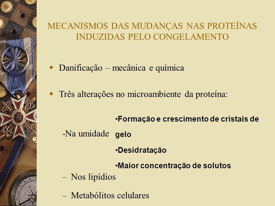MECANISMOS DAS MUDANÇAS NAS PROTEÍNAS INDUZIDAS PELO CONGELAMENTO
