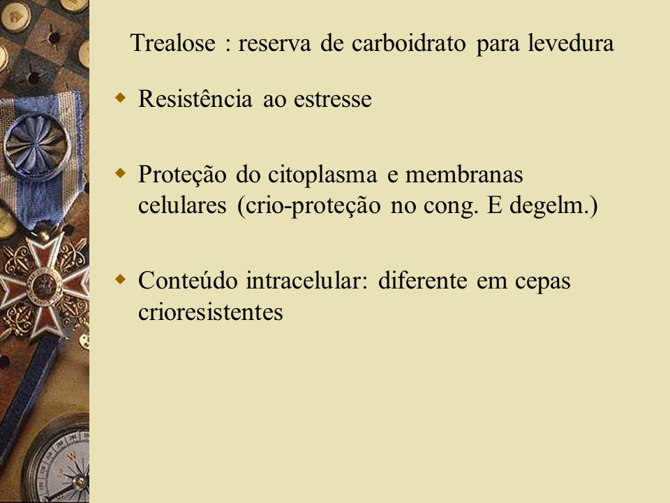Trealose : reserva de carboidrato para levedura