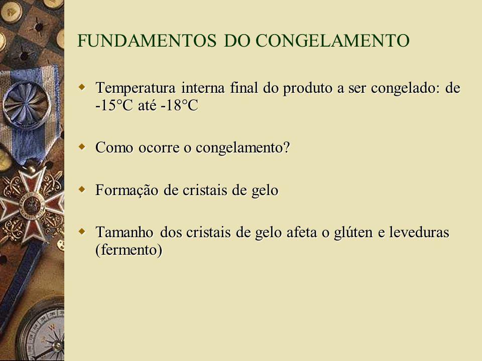 FUNDAMENTOS DO CONGELAMENTO