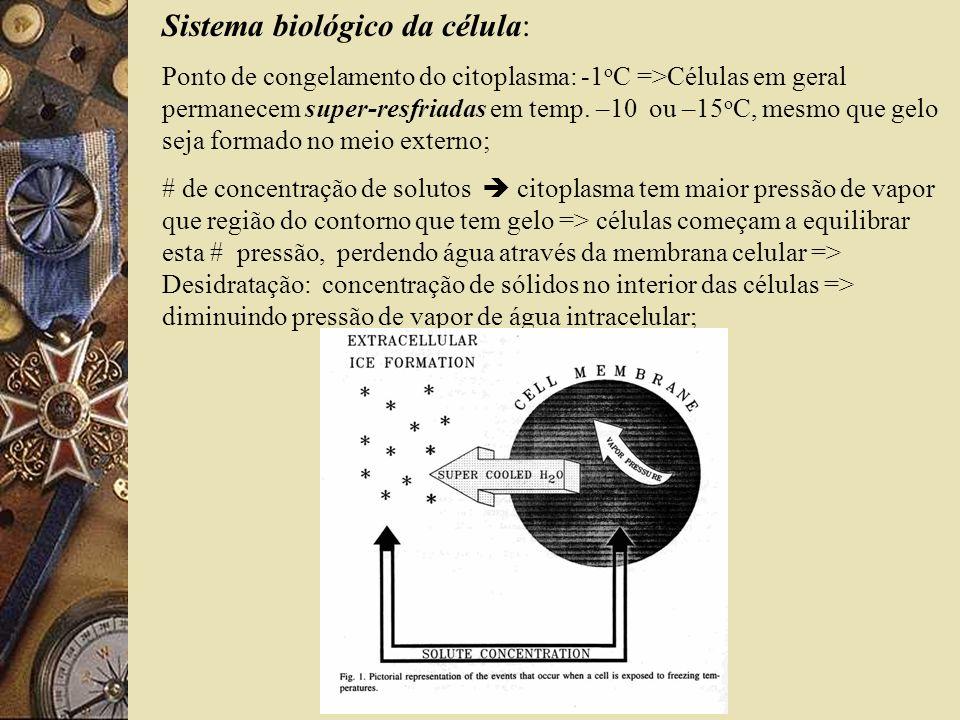 Sistema biológico da célula: