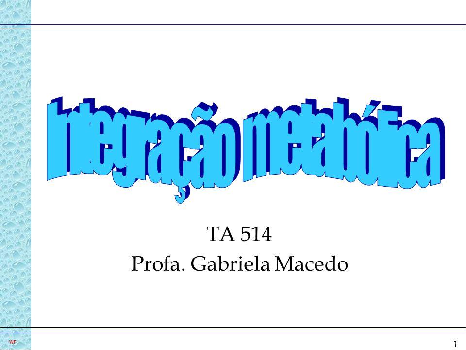 TA 514 Profa. Gabriela Macedo
