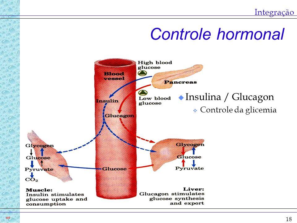 Integração Controle hormonal Insulina / Glucagon Controle da glicemia