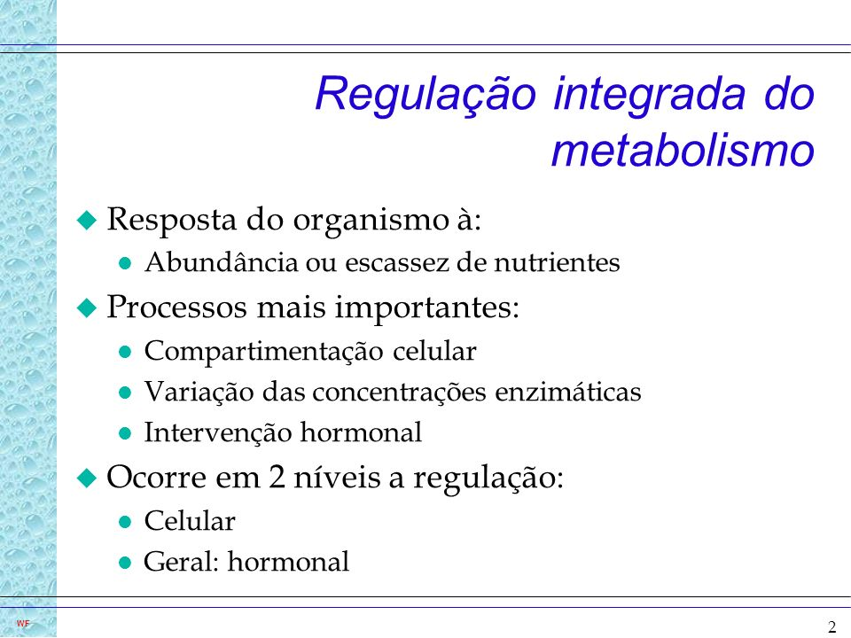 Regulação integrada do metabolismo