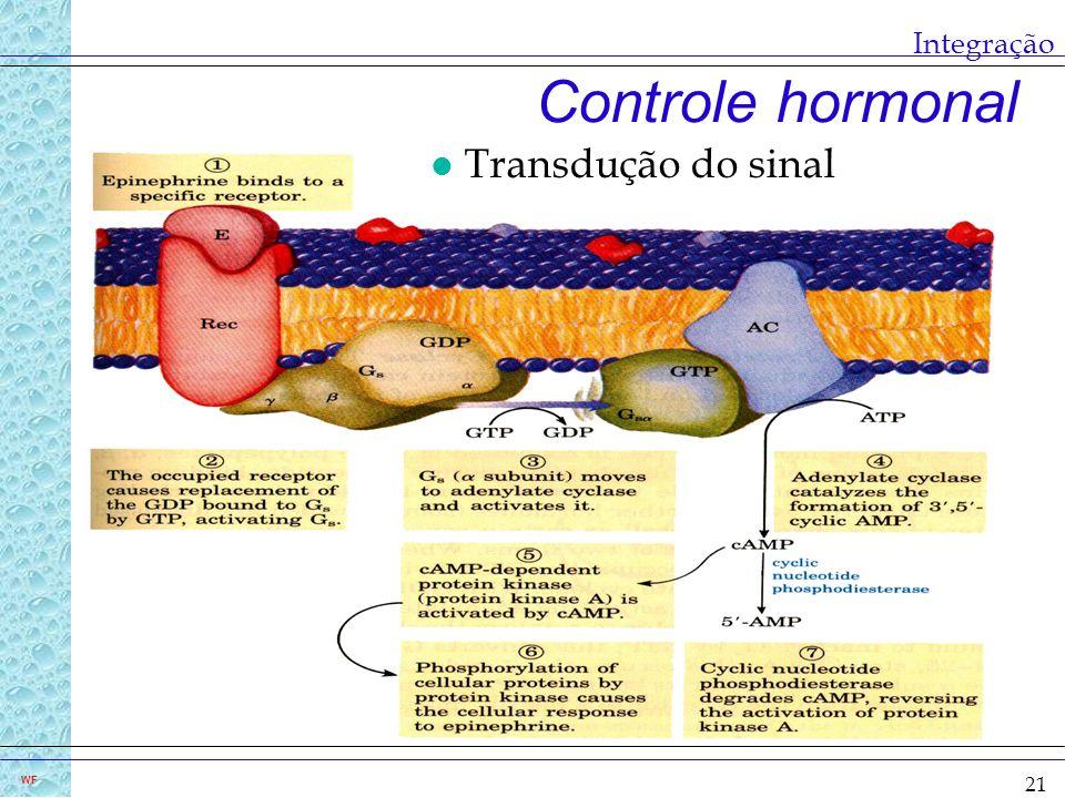 Integração Controle hormonal Transdução do sinal