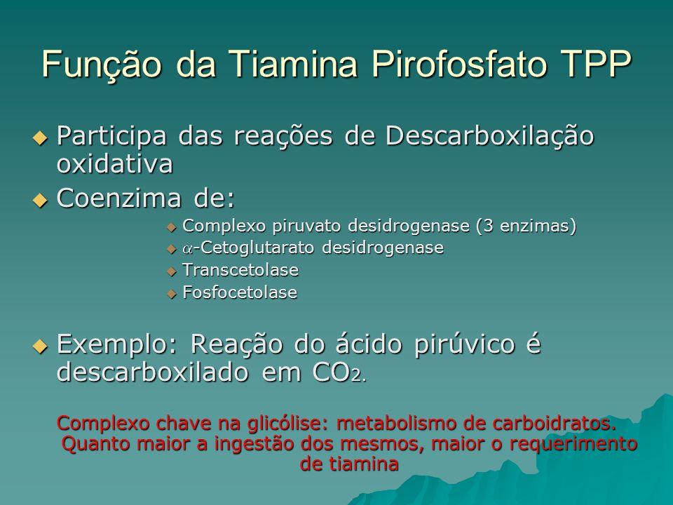Função da Tiamina Pirofosfato TPP