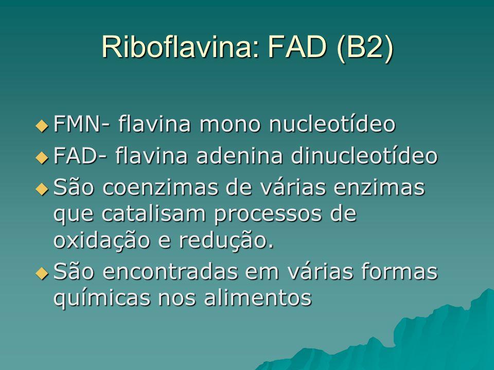 Riboflavina: FAD (B2) FMN- flavina mono nucleotídeo