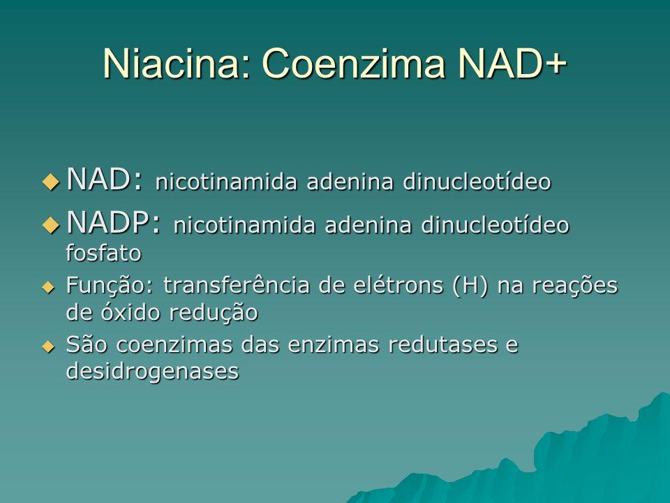 Niacina: Coenzima NAD+