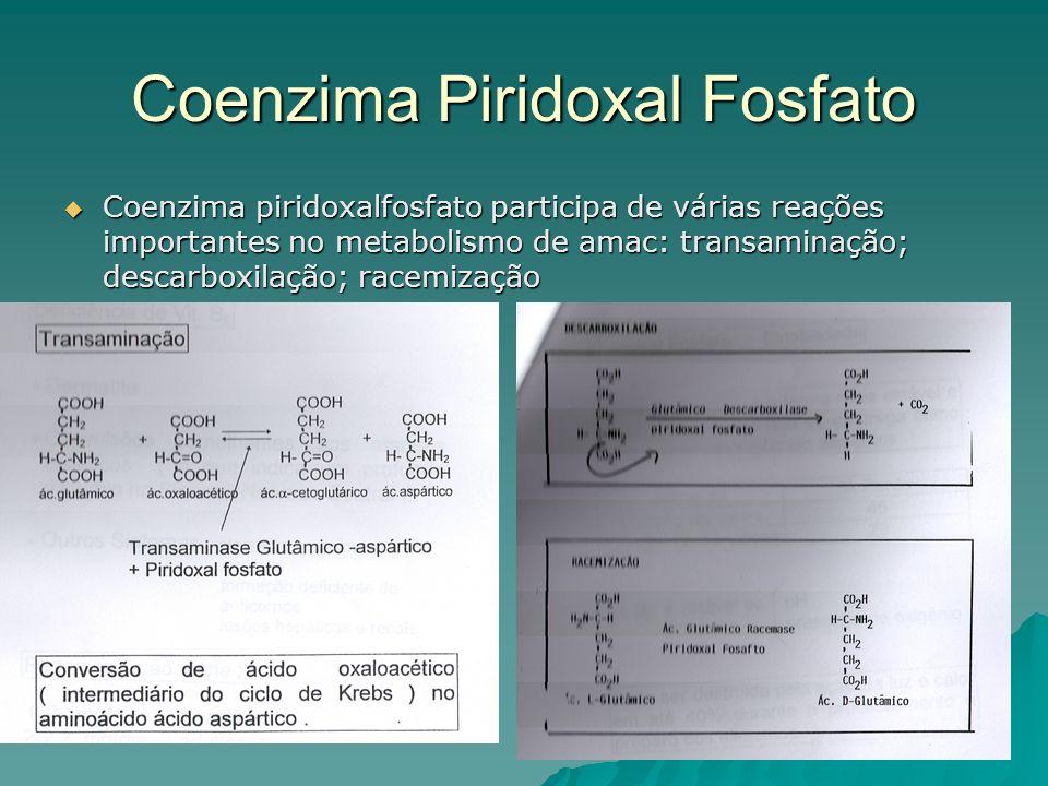 Coenzima Piridoxal Fosfato