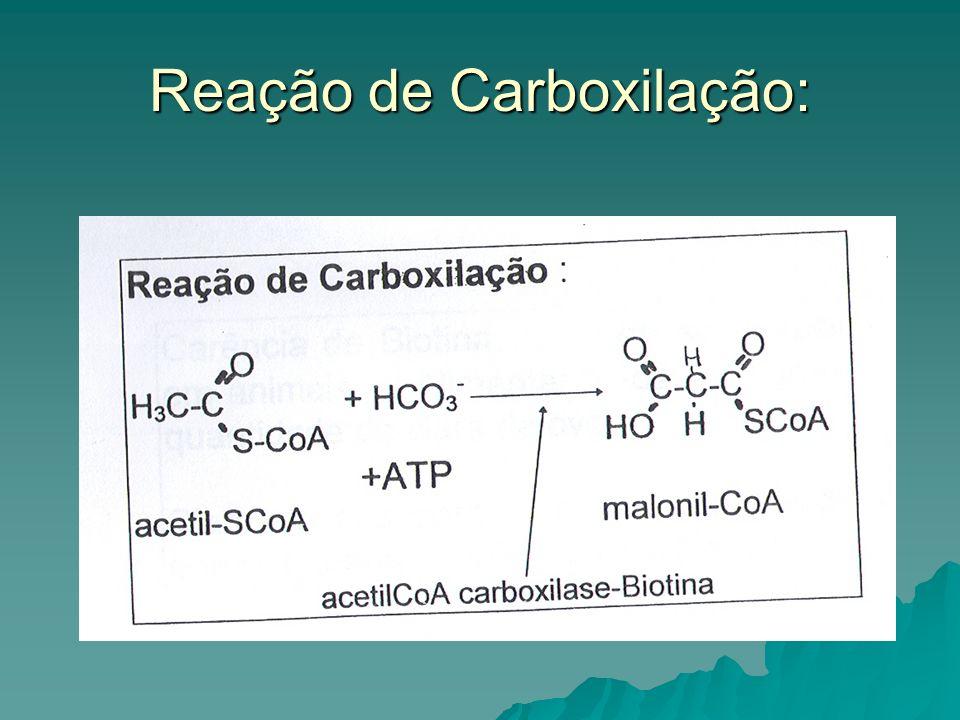 Reação de Carboxilação: