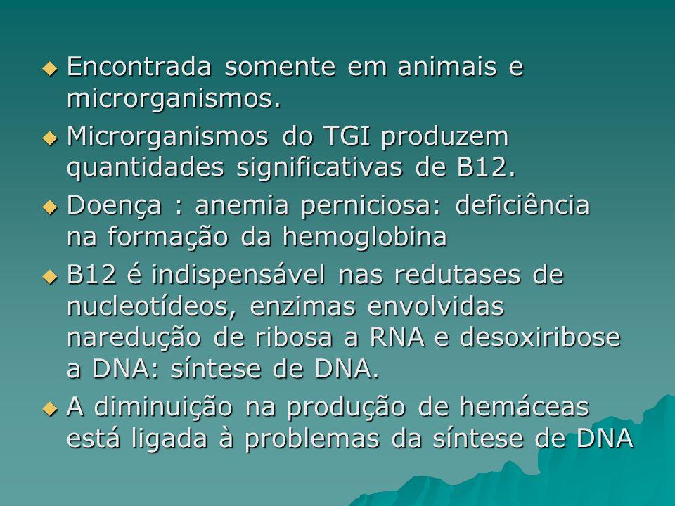 Encontrada somente em animais e microrganismos.