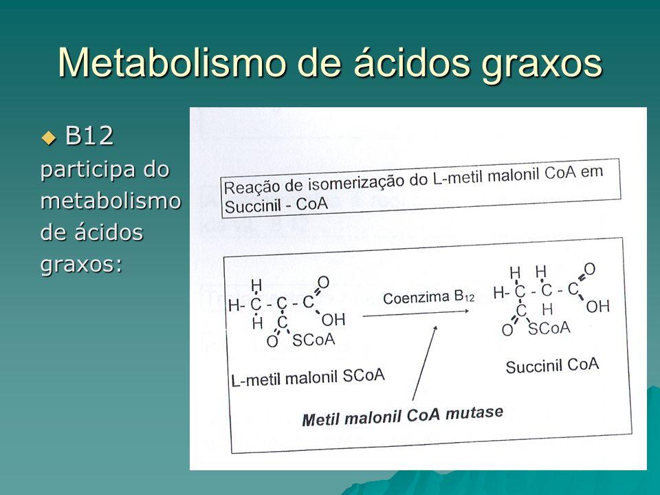 Metabolismo de ácidos graxos