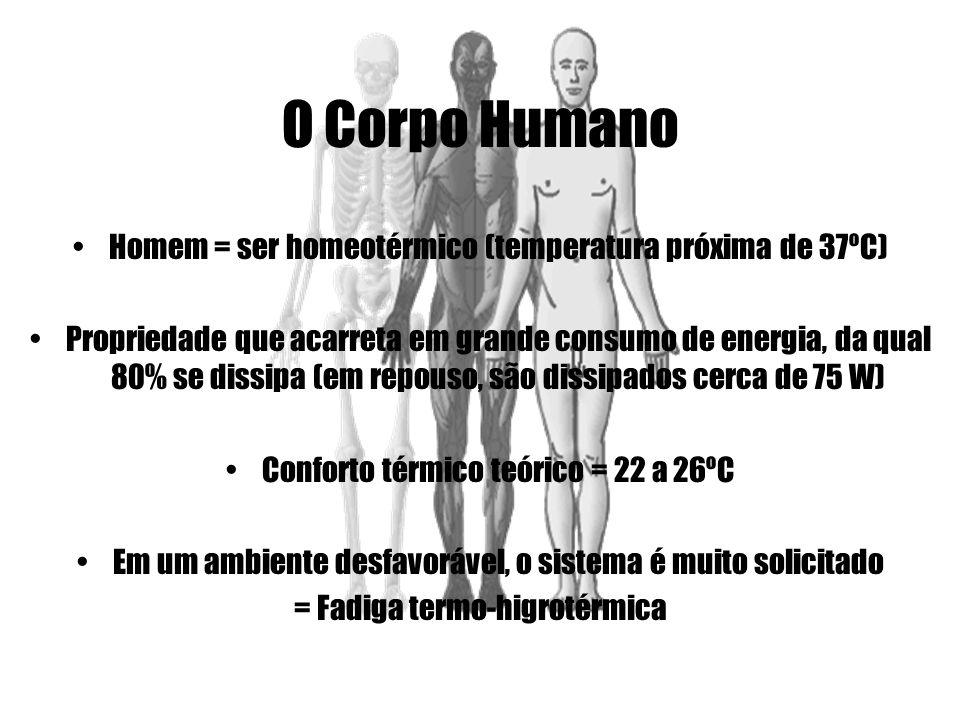 O Corpo Humano Homem = ser homeotérmico (temperatura próxima de 37ºC)