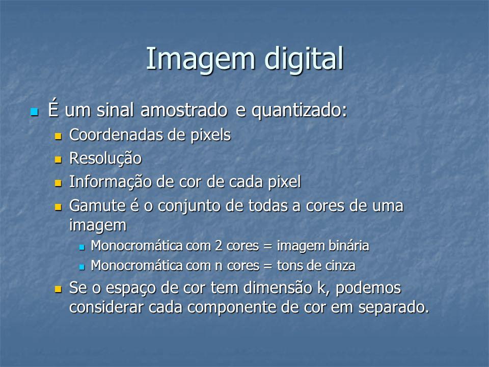 Imagem digital É um sinal amostrado e quantizado: