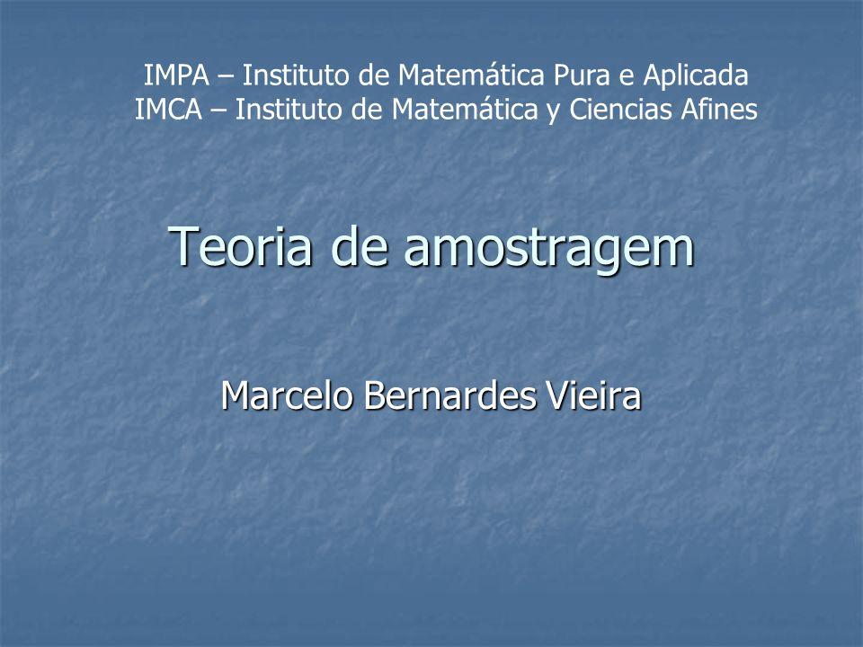 Marcelo Bernardes Vieira