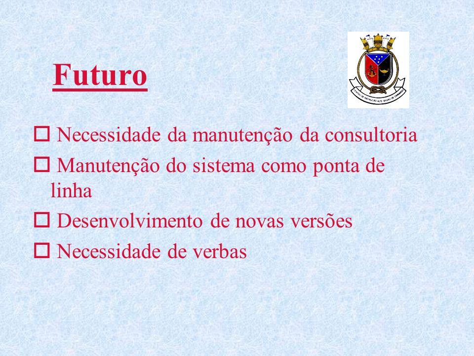 Futuro Necessidade da manutenção da consultoria