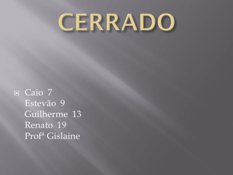 CERRADO Caio 7 Estevão 9 Guilherme 13 Renato 19 Profª Gislaine
