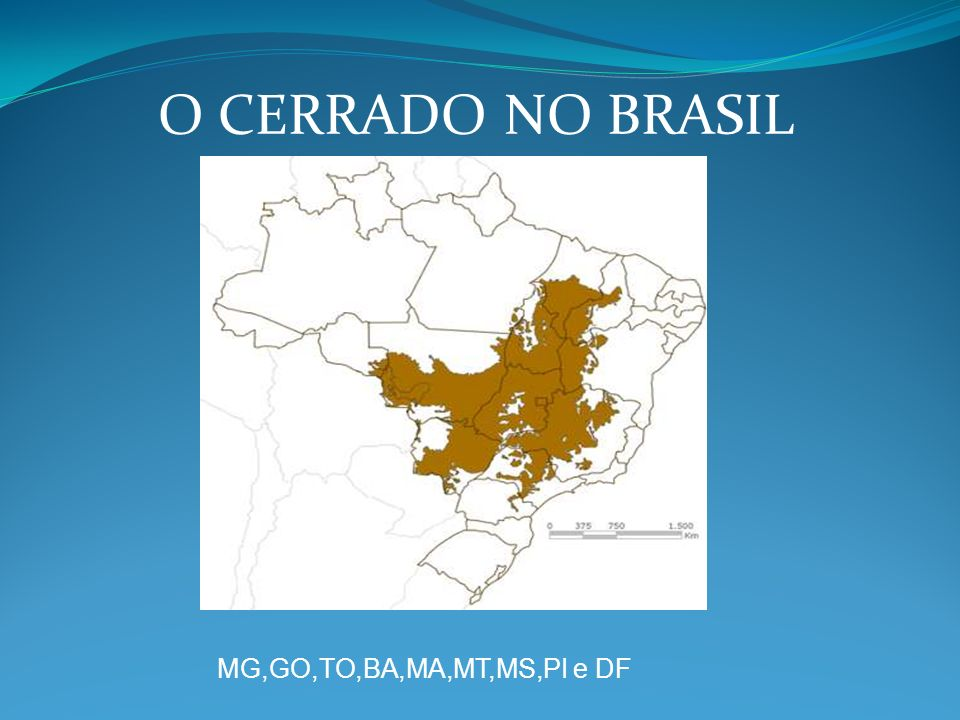O CERRADO NO BRASIL MG,GO,TO,BA,MA,MT,MS,PI e DF