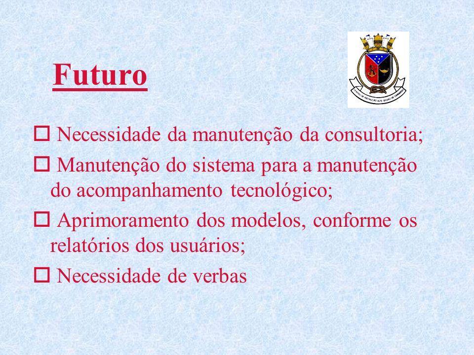 Futuro Necessidade da manutenção da consultoria;