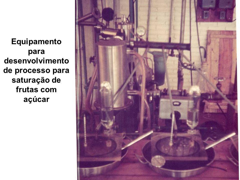 Equipamento para desenvolvimento de processo para saturação de frutas com açúcar