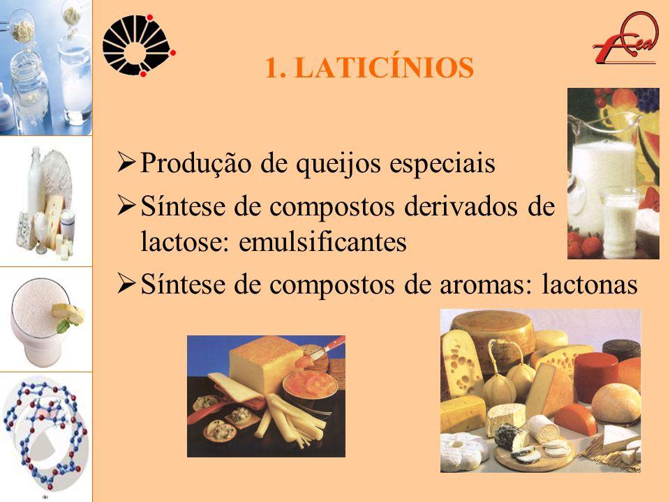 1. LATICÍNIOS Produção de queijos especiais. Síntese de compostos derivados de lactose: emulsificantes.