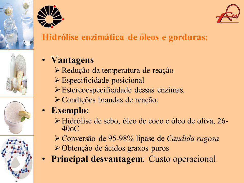 Hidrólise enzimática de óleos e gorduras: Vantagens
