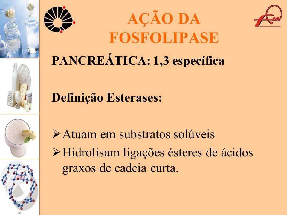 AÇÃO DA FOSFOLIPASE PANCREÁTICA: 1,3 específica Definição Esterases: