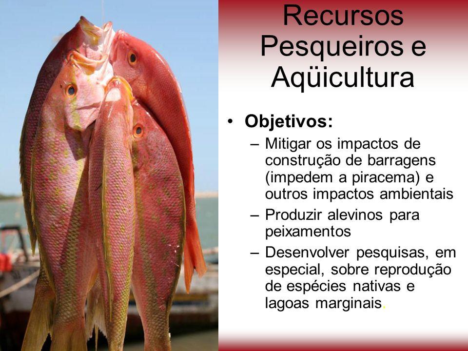 Recursos Pesqueiros e Aqüicultura