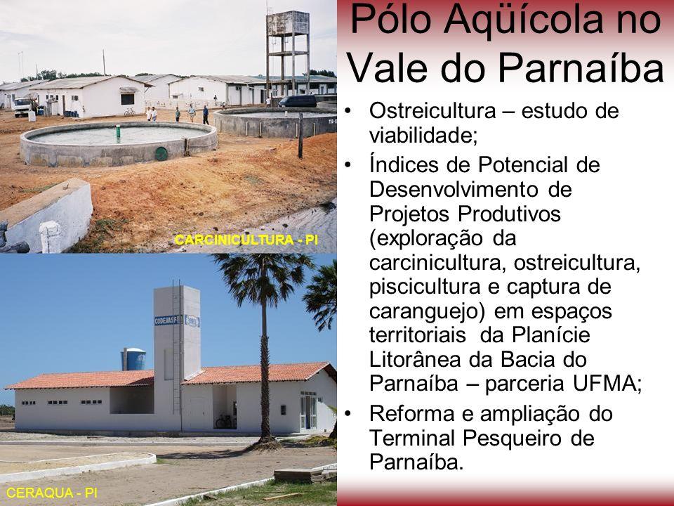Pólo Aqüícola no Vale do Parnaíba
