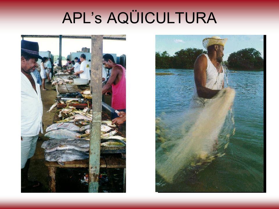 APL's AQÜICULTURA