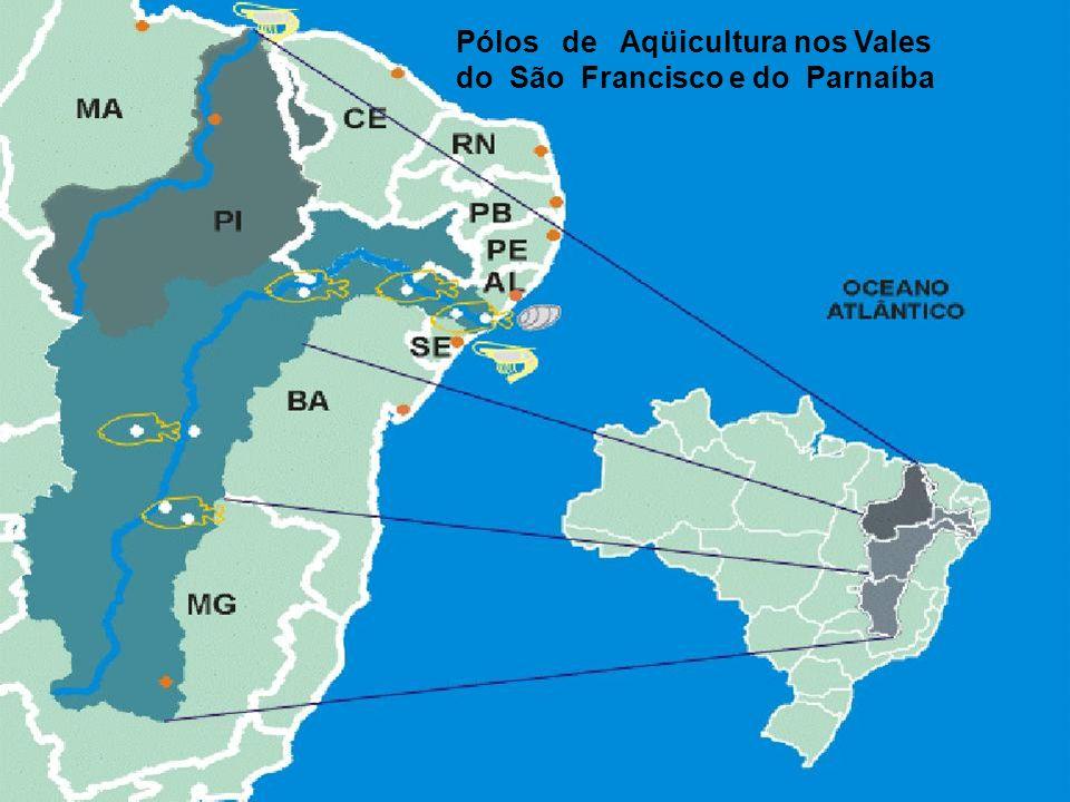 Pólos de Aqüicultura nos Vales
