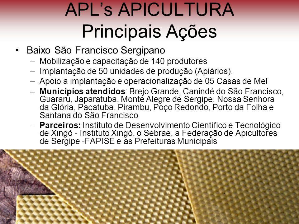 APL's APICULTURA Principais Ações