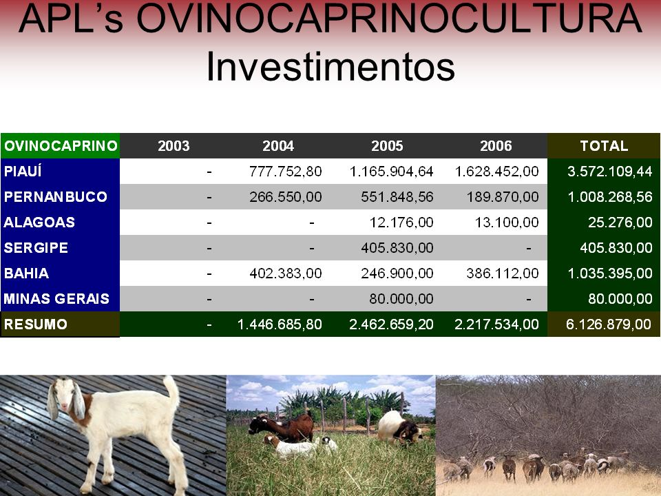 APL's OVINOCAPRINOCULTURA Investimentos