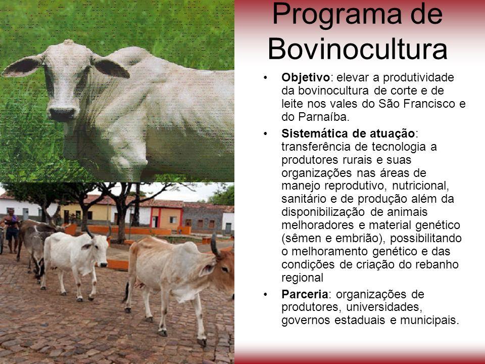 Programa de Bovinocultura