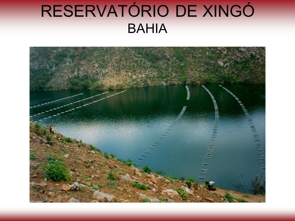 RESERVATÓRIO DE XINGÓ BAHIA