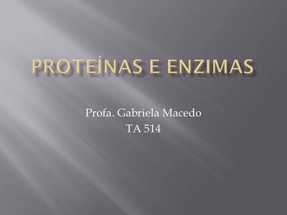 Profa. Gabriela Macedo TA 514