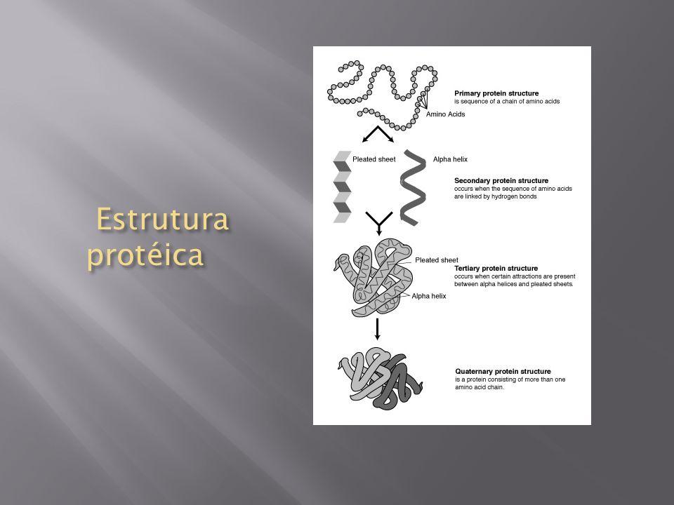 Estrutura protéica