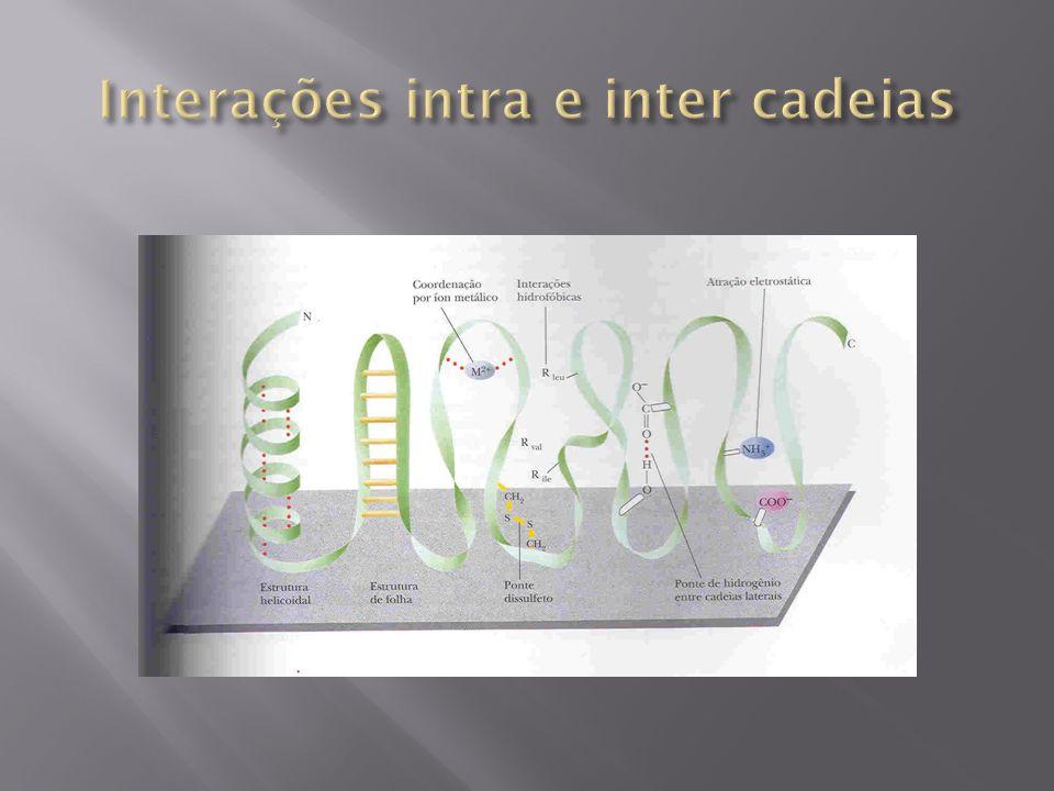 Interações intra e inter cadeias