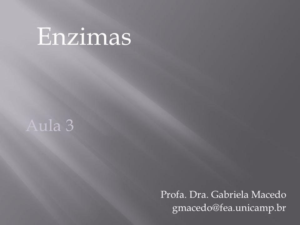 Profa. Dra. Gabriela Macedo gmacedo@fea.unicamp.br