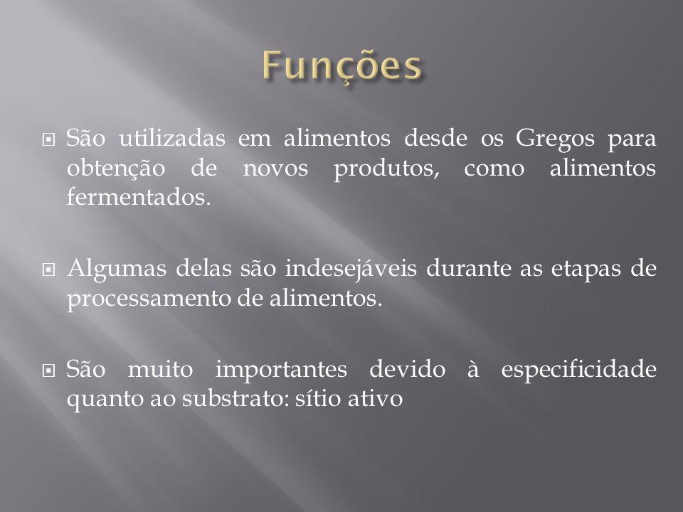 Funções São utilizadas em alimentos desde os Gregos para obtenção de novos produtos, como alimentos fermentados.