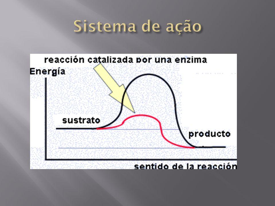 Sistema de ação
