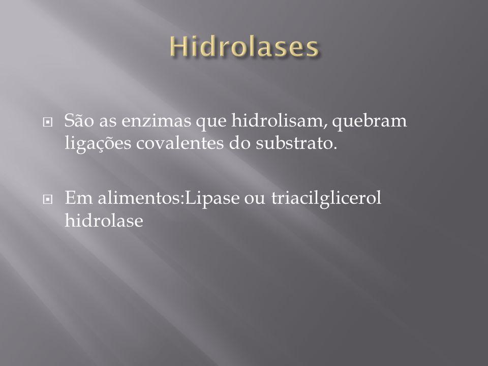 Hidrolases São as enzimas que hidrolisam, quebram ligações covalentes do substrato.