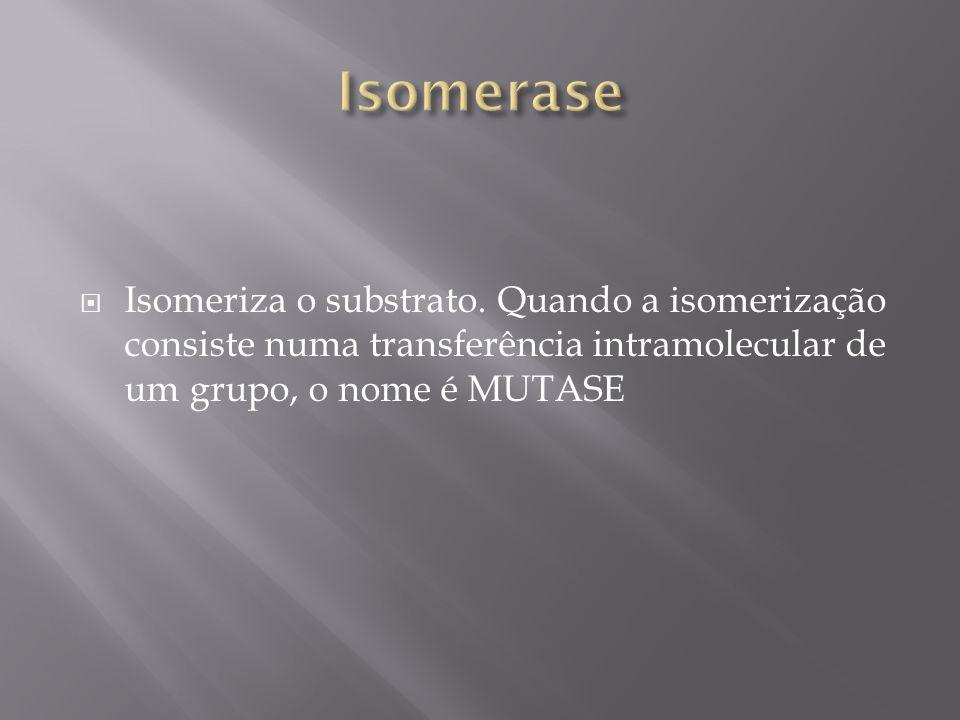 Isomerase Isomeriza o substrato.
