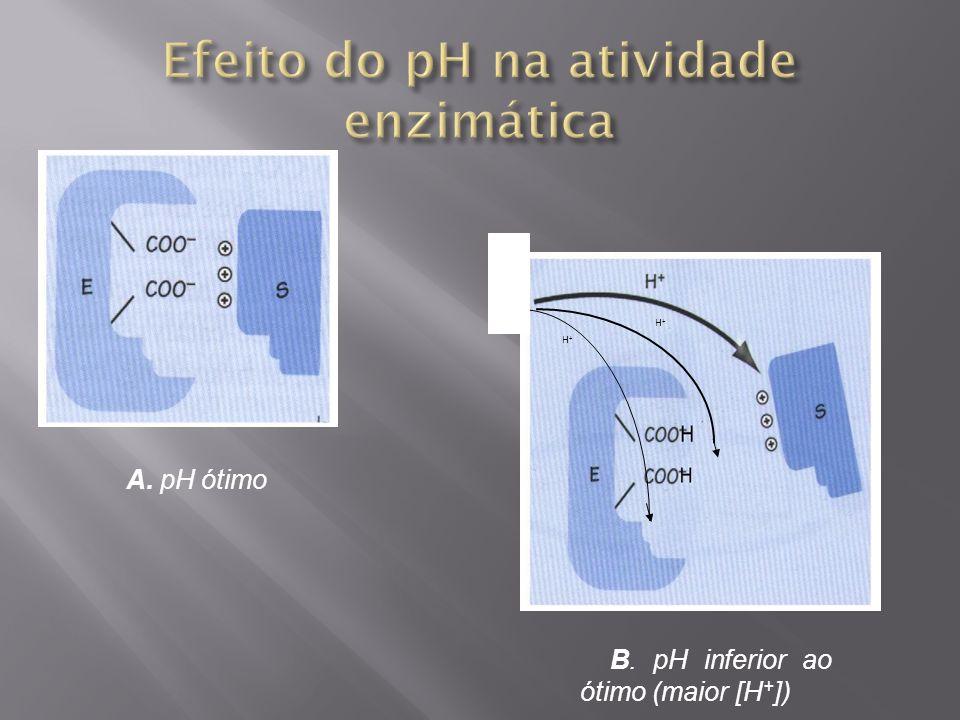 Efeito do pH na atividade enzimática