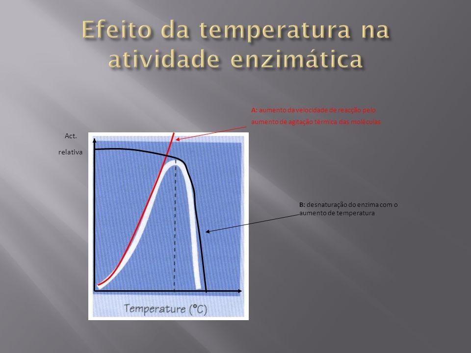 Efeito da temperatura na atividade enzimática