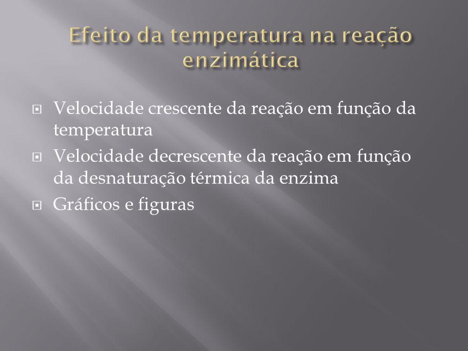 Efeito da temperatura na reação enzimática