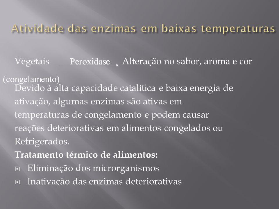 Atividade das enzimas em baixas temperaturas
