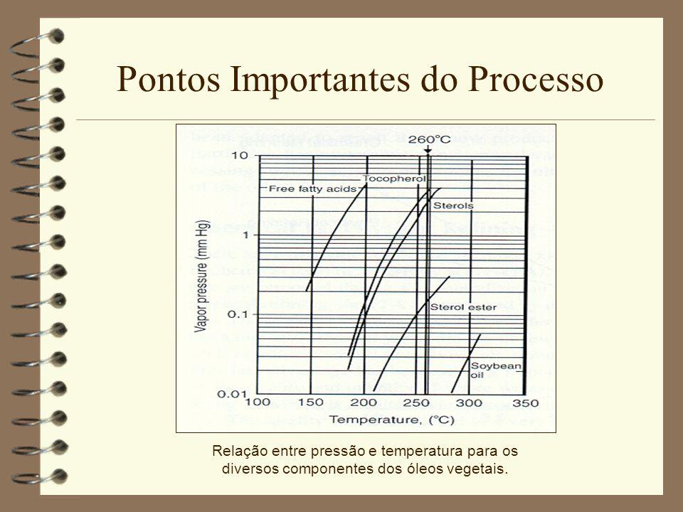 Pontos Importantes do Processo